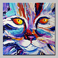 cheap Oil Paintings-Hand-Painted Animals Square, Abstract Modern Canvas Oil Painting Home Decoration One Panel