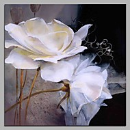 Gardenia Jasminoides Wall Decor Hand Painted Contemporary Oil Paintings Modern Artwork Wall Art