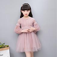 Dzieci Dla dziewczynek Prosty / Vintage / Podstawowy Impreza / Codzienny Solidne kolory / Żakard Koronka / Haft Długi rękaw Bawełna / Akryl / Poliester Sukienka Biały
