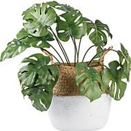 billige Kunstig Blomst-Kunstige blomster 1 Afdeling Moderne / pastorale stil Planter Bordblomst