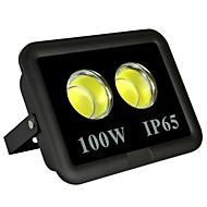 Χαμηλού Κόστους Προβολείς-1pc 100 W LED Προβολείς Αδιάβροχη / Διακοσμητικό Θερμό Λευκό / Ψυχρό Λευκό 85-265 V Εξωτερικός Φωτισμός / Αυλή / Κήπος