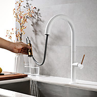 Kitchen Faucets Faucet Two Handles One Hole Painted Finishes Pull Out