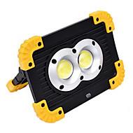 baratos Focos-YWXLIGHT® 1pç 20 W Focos de LED Novo Design / Legal Branco Frio 4.5 V Iluminação Externa 2 Contas LED