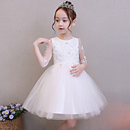 Princess Above Knee Flower Girl Dress - POLY Half Sleeve Jewel Neck with Embroidery by LAN TING Express