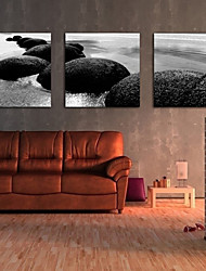 Canvas Set of 3 Landscape Off the Coast of Stone Stretched Canvas Print Ready to Hang