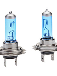 cheap -H7 Super White Car Halogen Light Bulbs 100W (2-Pack/DC 12V)