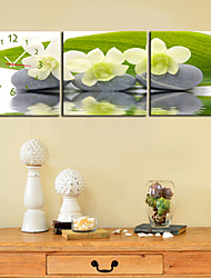 "abordables -12 ""-24"" Country Style Flower reloj de pared en la lona 3pcs"