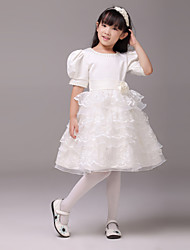 Ball Gown Knee Length Flower Girl Dress - Lace Short Sleeves Jewel Neck
