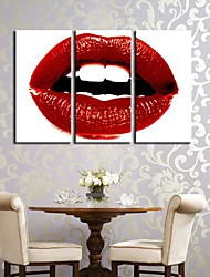 Stretched Canvas Art A Warm Red Lip Set of 3