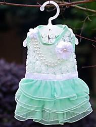 Cani Vestiti Verde / Rosa Abbigliamento per cani Estate Con perline Matrimonio