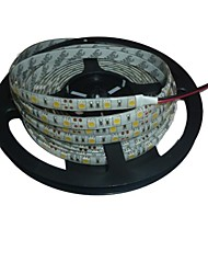 cheap -Waterproof 5M 72W 300*5050 SMD 4800LM  White Light LED Strip Lamp(DC12V)