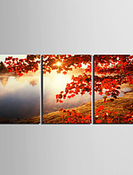 cheap -Classic Realism, Three Panels Horizontal Print Wall Decor Home Decoration