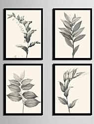 economico -Floreale/Botanical Tele con cornice / Set con cornice Wall Art,PVC Nero Senza passepartout con cornice Wall Art