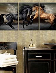Недорогие -е-Home® растягивается холсте лошадь декоративной живописи набор из 3