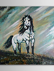 IARTS Oil Painting Animal Lonely Horse in The Hill Hand Painted Canvas with Stretched Frame