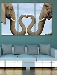 Недорогие -е-Home® растягивается холсте слон декоративной живописи набор из 3