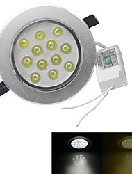 12 High Power LED 1080-1200lm Warm White Cold White 3000-3200K/6000-6500K Dimmable AC 100-240V