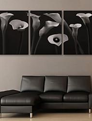 e-Home® allungato su tela di fiori pittura decorativa set di 3
