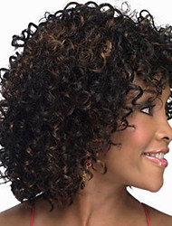 cheap -Europe And The United States  Sell Like Hot Cakes in Middle-Aged Black Highlights Fleeciness Short Curly Wig