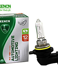 2PCS XENCN H1R2 12V 55W 3200K Clear Series Original Car Headlight High Quality Halogen Bulb Auto Fog Lamps