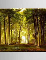 cheap -Oil Painting Pastoral Scenery Forest Woodland Hand Painted Canvas with Stretched Framed
