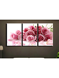 cheap -Prints Poster Wall Art Painting Pink Rose Pictures Print On Canvas  3pcs/set (Without Frame)