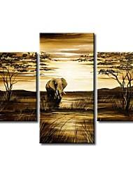 Недорогие -ручная роспись современной абстрактной слон жираф старинные африканские пейзаж маслом на холсте 3шт / не устанавливал кадр