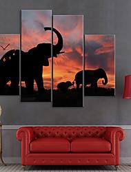 cheap -Stretched Canvas Print Art Animal Elephants Set of 4