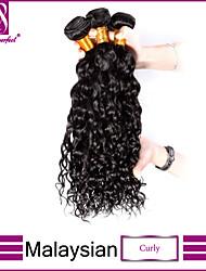 Недорогие -Малазийские волосы Классика Кудрявое плетение Кудрявый Ткет человеческих волос 3 предмета Высокое качество 0.3 Повседневные