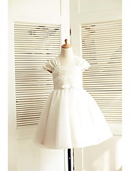 cheap -A-Line Knee Length Flower Girl Dress - Lace Tulle Short Sleeves Square Neck with Bow(s) Sash / Ribbon by LAN TING BRIDE®