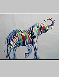 economico -astratto animale bello pittura a olio moderna zebra dipinto a mano, un pannello di tela pronta per essere appesa