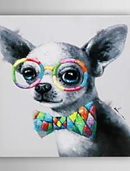 ručně malované olejomalba zvíře pes s brýlemi s nataženém rámem 7 stěny arts®