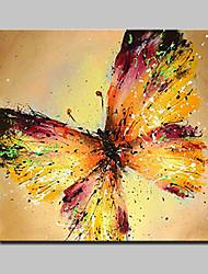 lager dipinto a mano dipinto a olio moderno a farfalla su tela di canapa foto di arte per la casa con telaio pronto a appendere
