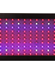 Full Spectrum Led Grow Light Lamp100leds 300W For Flowering Plant Veg Hydroponics system LED light White/Black Shell