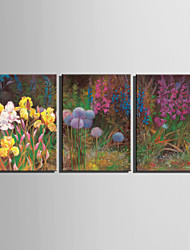 E-HOME® Stretched Canvas Art Flowers In Clusters Decoration Painting  Set Of 3
