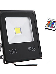 30W RGB Color Light IP65 Led Flood Light Waterproof Outdoor Wall Lamp Projectors(85-265V)