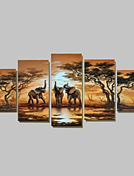 cheap -Hand-Painted Modern Abstract Elephant  Sunset African Landscape Oil Painting on Canvas  5pcs/set No Frame