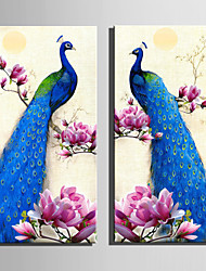 cheap -E-HOME® Stretched Canvas Art Pink Flowers And Blue Peacock Decoration Painting  Set Of 2