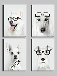 cheap -E-HOME® Stretched Canvas Art Glasses And Dogs Decoration Painting  Set of 4