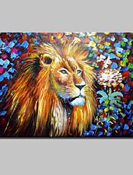 baratos -pintados à mão pintura a óleo abstrata do leão animais moderna sobre a arte da parede da lona, com quadro esticado pronto para pendurar