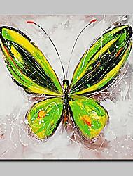 abordables -peintures à l'huile papillon des animaux peints à la main sur l'image toile d'art moderne mur avec cadre étiré prêt à accrocher