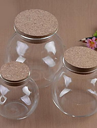 Micro Landscape Ecology Bottle Glass Pots For Succulents Moss DIY Glass Vase (10cm)