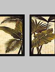 baratos -Floral/Botânico Quadros Emoldurados / Conjunto Emoldurado Wall Art,PVC Preto Sem Cartolina de Passepartout com frame Wall Art