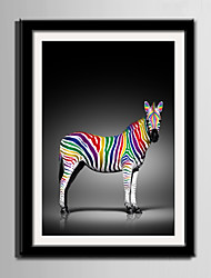 E-HOME® Framed Canvas Art, Colored Zebra Framed Canvas Print One Pcs