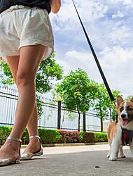 Недорогие -Собака Ремни Собачья упряжка для использования в авто / Собачья упряжка для безопасности Водонепроницаемость Дышащий Регулируется / Выдвижной Однотонный губка Ластик Оранжевый Красный Зеленый