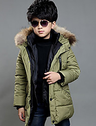 Boy's Casual/Daily Solid Down & Cotton Padded,Cotton Winter Green