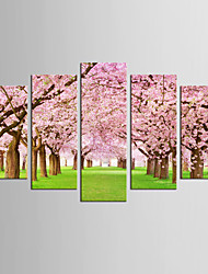 Canvas Set Famous Floral/Botanical Modern Realism,Five Panels Canvas Any Shape Print Wall Decor For Home Decoration