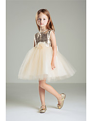 cheap -Princess Knee Length Flower Girl Dress - Cotton Sequined Sleeveless Jewel Neck with Bow(s) Sequins by LAN TING BRIDE®