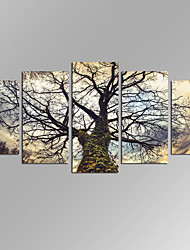 VISUAL STAR®Creative Large Tree Picture Giclee Artwork 5 Panels Modern Home Wall Decoration Framed Canvas Print Ready to Hang
