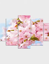 cheap -Landscape Floral/Botanical Style Modern,Five Panels Canvas Any Shape Print Wall Decor For Home Decoration